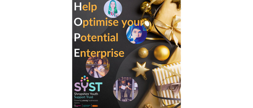 HOPE: Help Optimise your Potential Enterprise